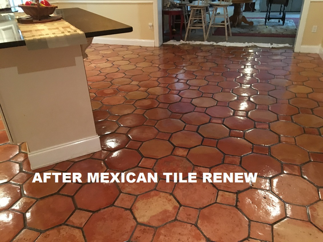 Mexican Tile Floors Gallery Home Fixtures Decoration Ideas